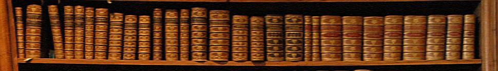 SteinBlog header image 2